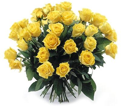 Žlté ruže 30 - Yellow bouquet of roses 30
